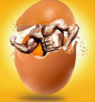 عضله سازی با تخم مرغ کامل