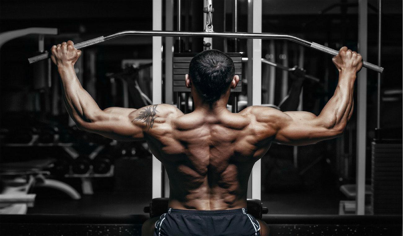تمرین تقویت عضلات شانه