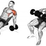 Front Incline Dumbell Raise