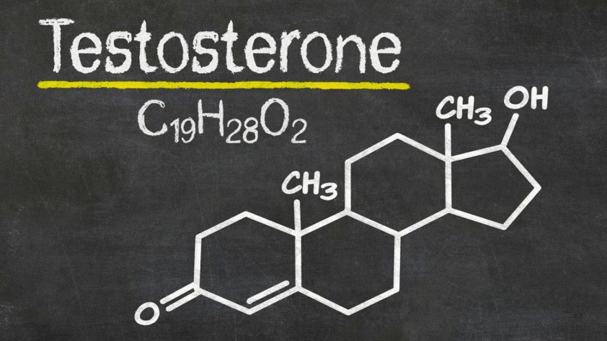 تاثیر تستسترون در بدنسازی بانوان