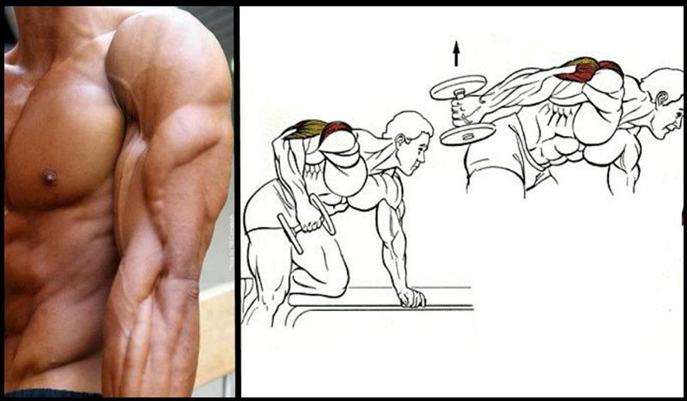 پشت بازو با دمبل 2