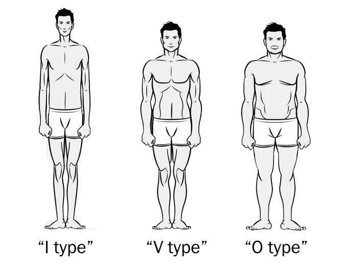 انواع فرم بدن انسان
