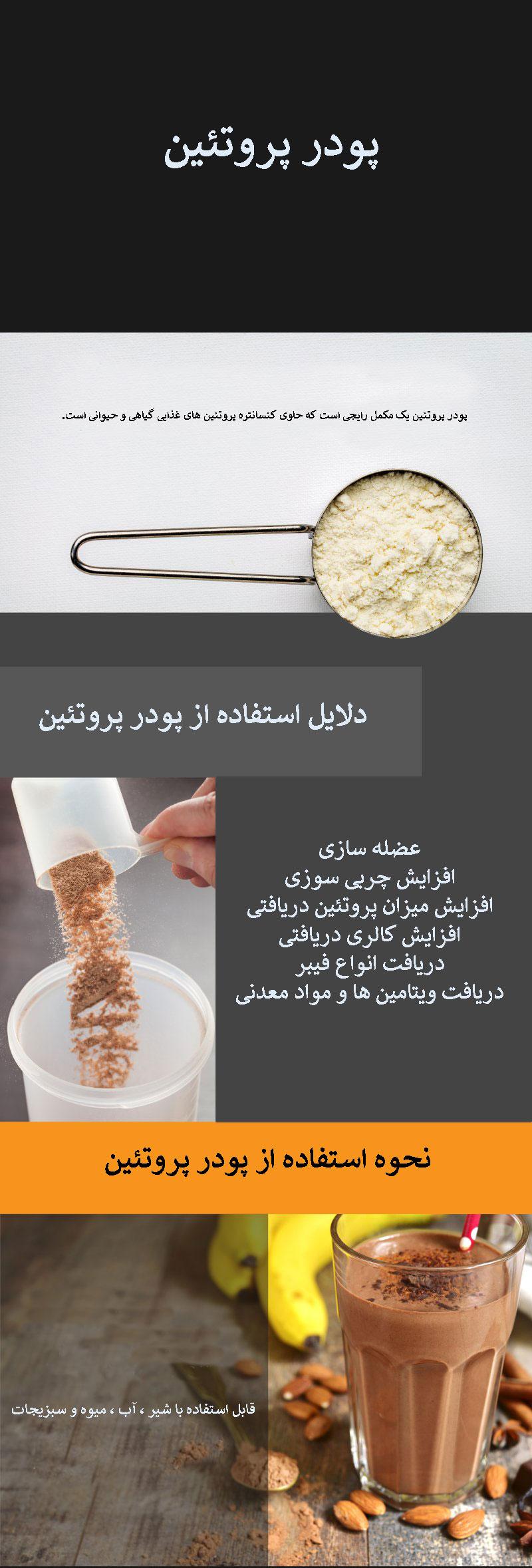 پودر پروتئین چیست