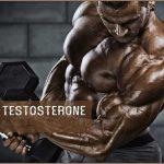 هورمون بدنسازی تستسترون
