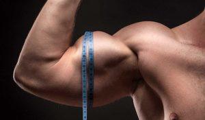 برنامه عضله سازی حرفه ای