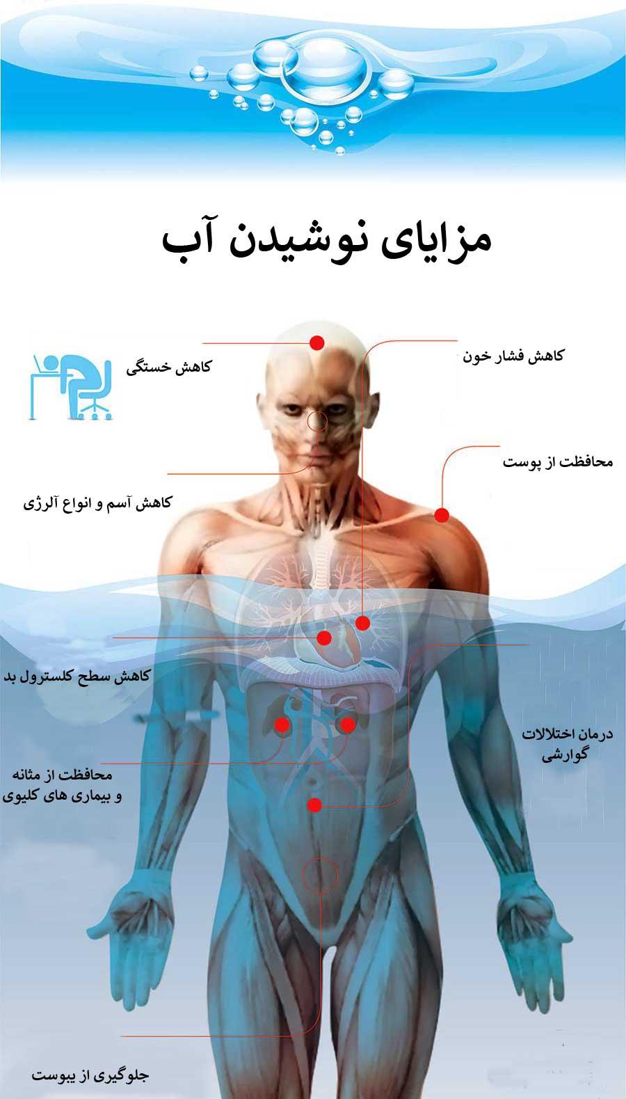 تاثیر نوشیدن آب در متابولیسم بدن