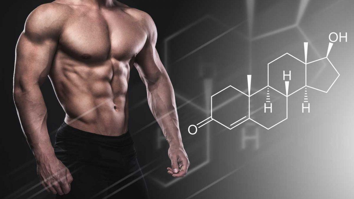 هورمون تستوسترون چیست