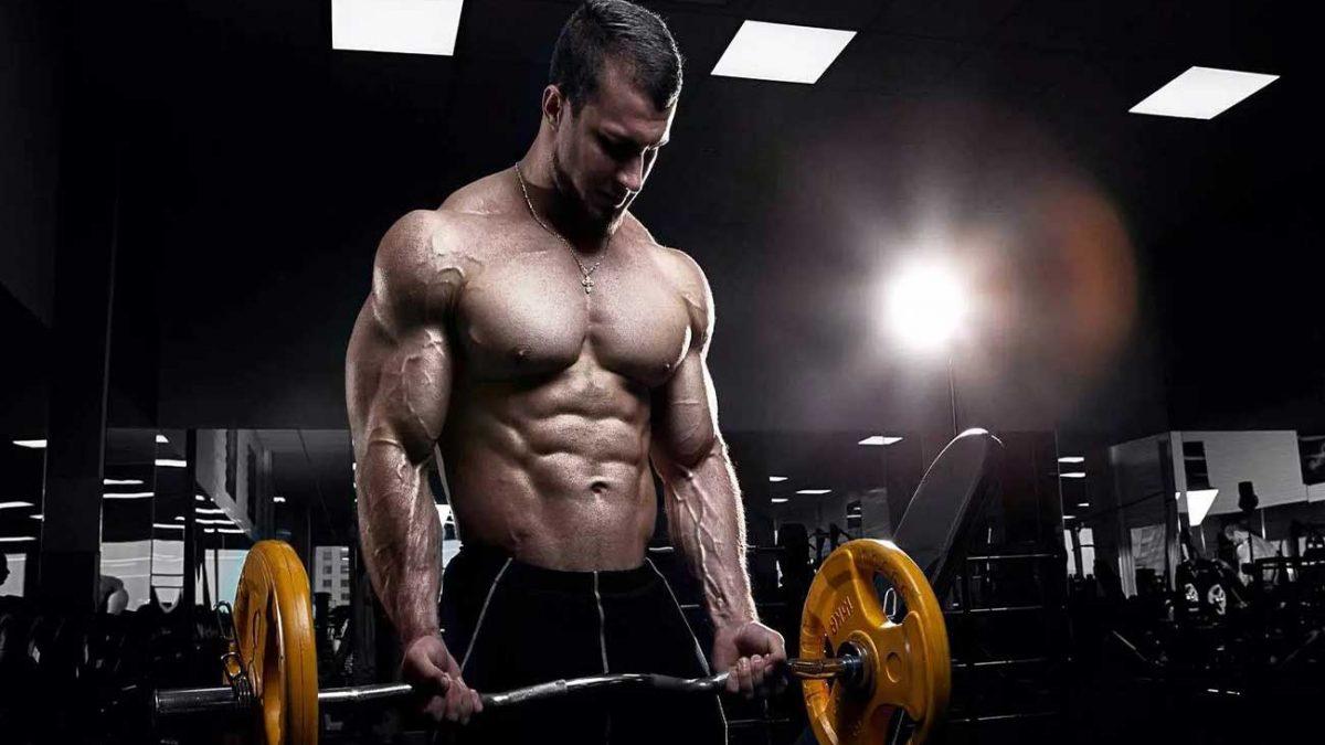 راهنمای کامل عضله سازی سریع در 5 مرحله