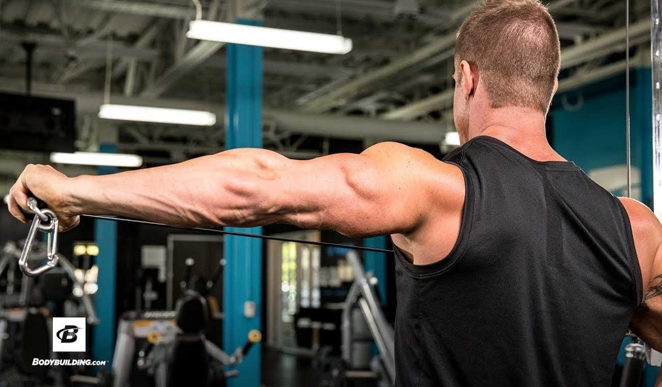 برنامه تمرینی تقویت عضلات پشت بازو