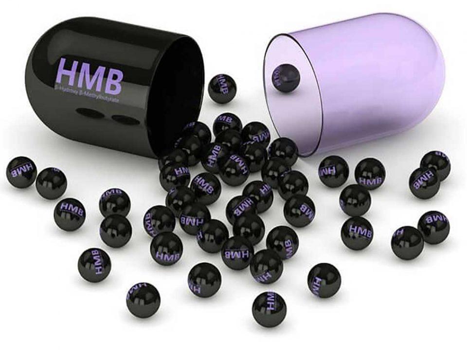 مکمل HMB چیست