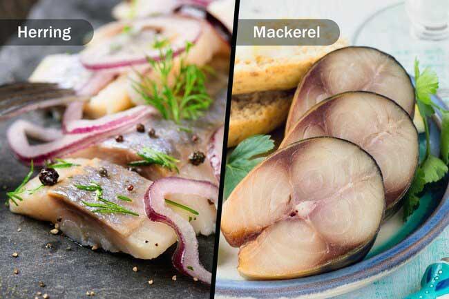 مصرف ماهی های چرب در رژیم نوردیک