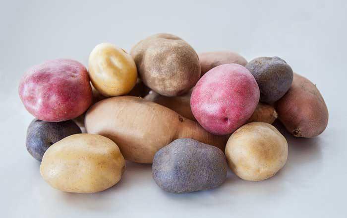 سیب زمینی = مواد غذایی عضله ساز