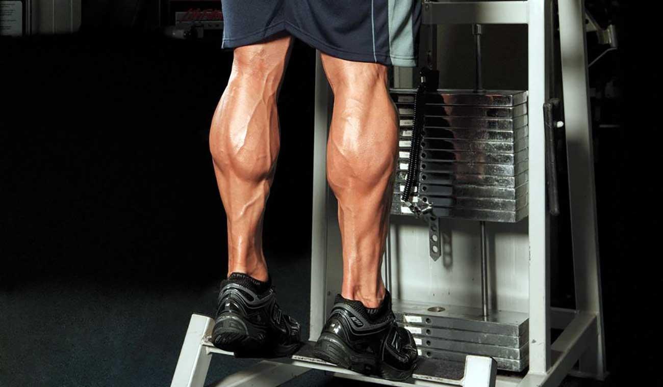 حرکات بدنسازی برای افزایش حجم ساق پا