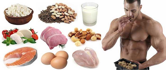 عضله سازی با مصرف پروتئین
