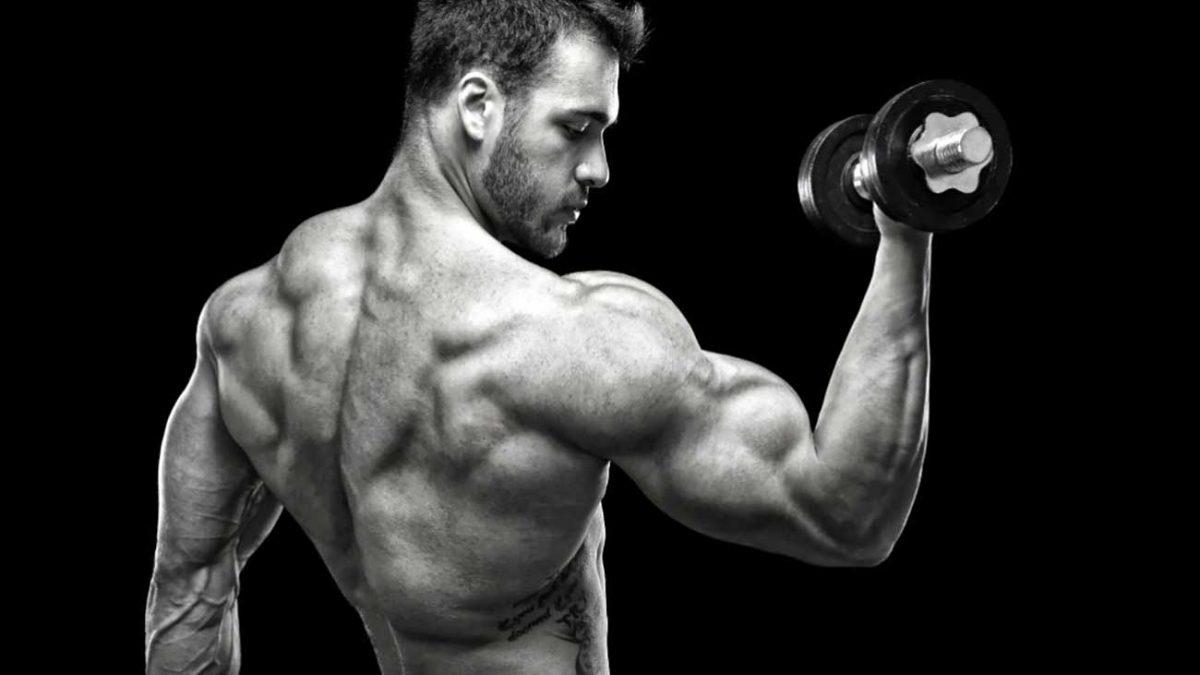 راهکارهای افزایش حجم عضلات دست