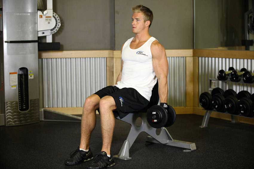 حرکت جلو بازو با دمبل نشسته