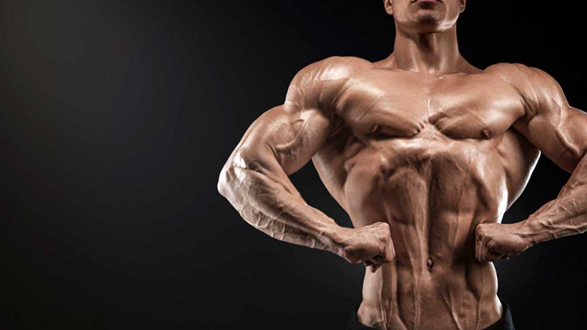 برنامه بدنسازی هفتی شدن بدن