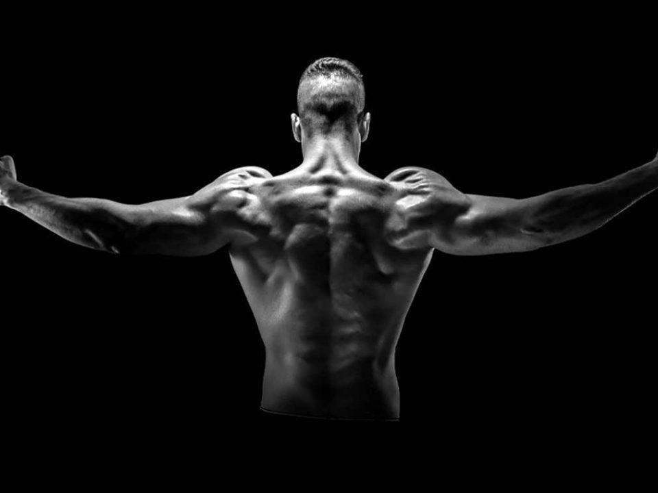 برنامه تفکیک عضلات پشت و زیر بغل