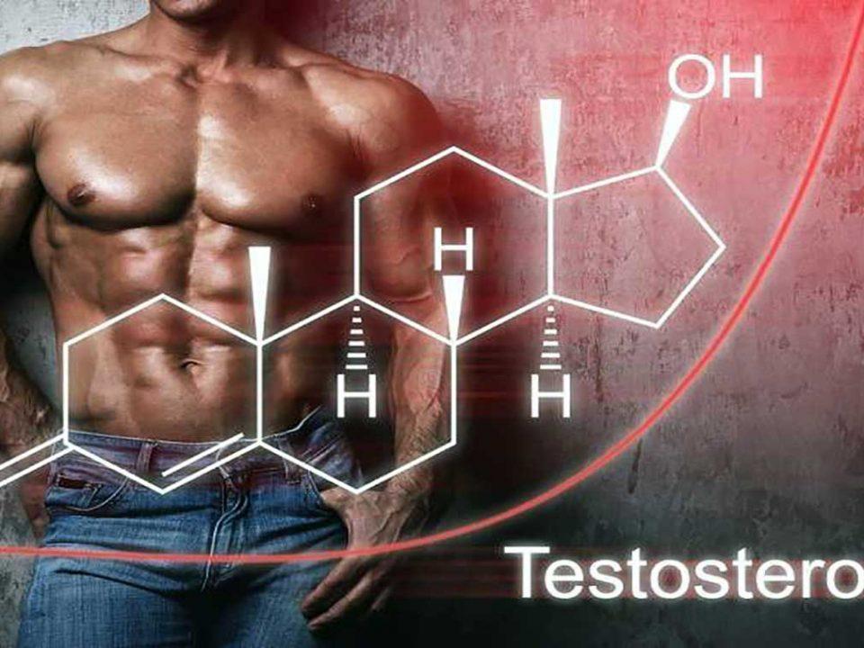 مکمل تستسترون برای بدنسازان