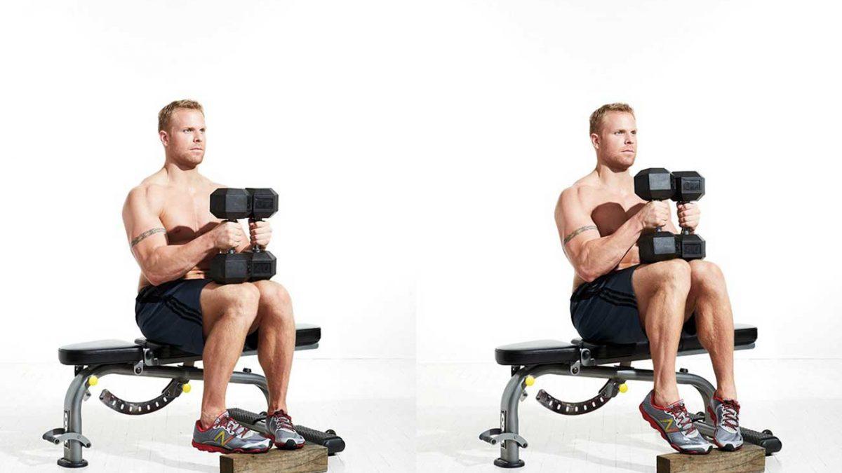 تمرین ساق پا نشسته دمبل